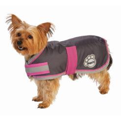 Koera vihmajope väikestele tõugudele