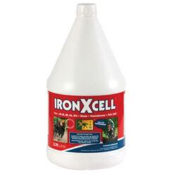 TRM raud ja B-vitamiin IronXcell