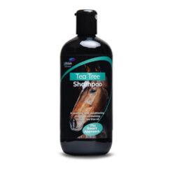 Šampoonid ja kuivšampoonid
