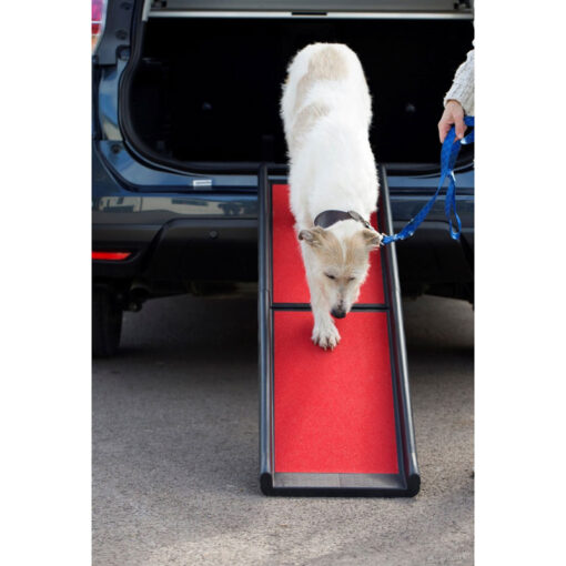 Henry Wag kokkupandav ramp koerale