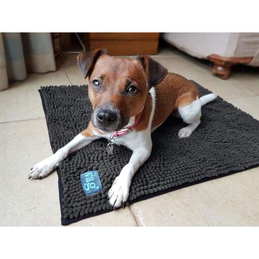 Henry Wag mikrofiiber koera kuivatusmatt Noodle hall/sinine
