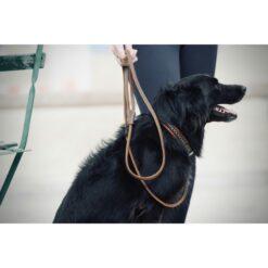 Penelope nahast koerte jalutusrihm kataloog