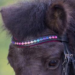 Waldhausen poni valjad Pinky Star otsmikurihm