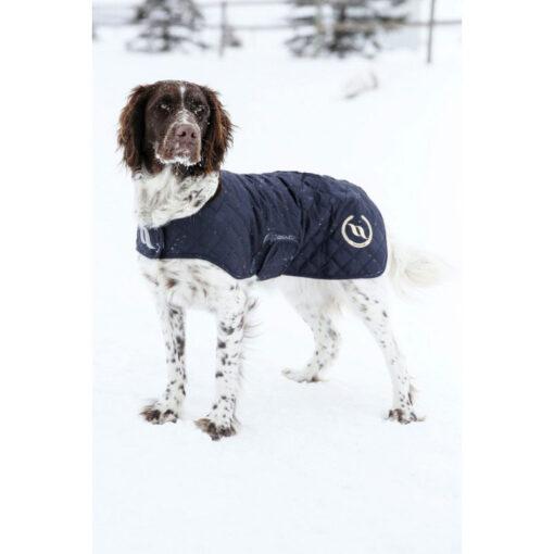 Back on Track füsioteraapiline koera jope Night Collection kataloog