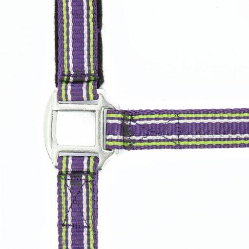 Norton ülitugevad päitsed Strong ploomililla/roheline/valge