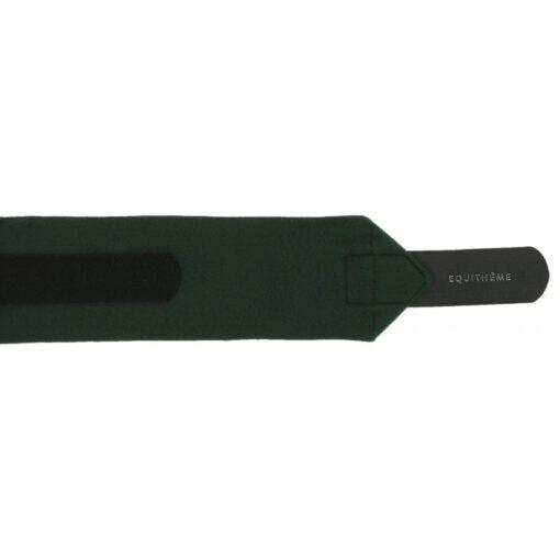 Equithéme fliispinded Polo roheline