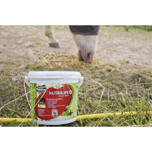 Ravene vitamiinid ja mineraalid Nutrilife+ 2.7 kg